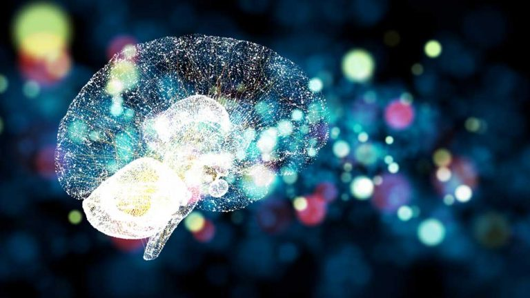differences between ai and machine learning neural network concept
